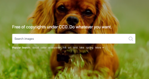 PxHere: Best Shutterstock Alternatives: Download Royalty Free Images