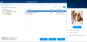 iBoysoft: Best Data Recovery Apps for Windows